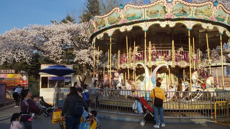carousel-item-undefined